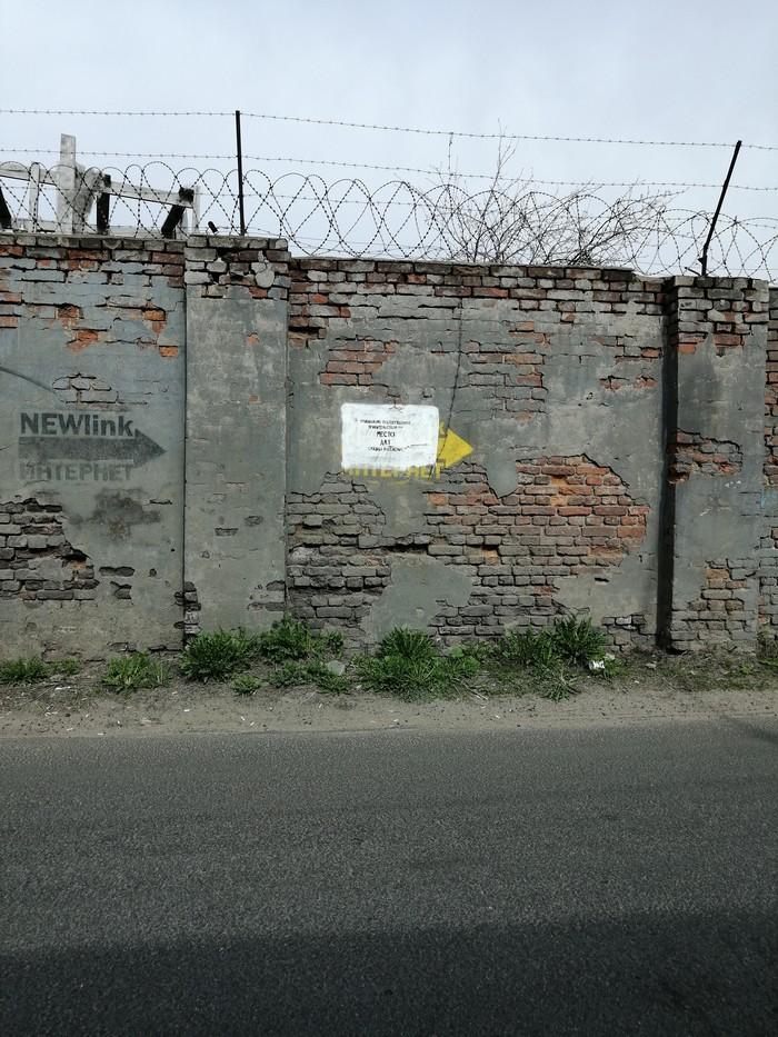 Где-то в Питере Стена, Надпись на стене, Санкт-Петербург, Длиннопост