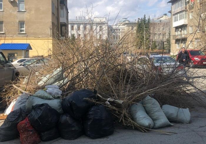 В Омске не убирают помойку даже в 100 метрах от здания облправительства Омск, Бардак, Мусорная реформа, Как всегда, Администрация