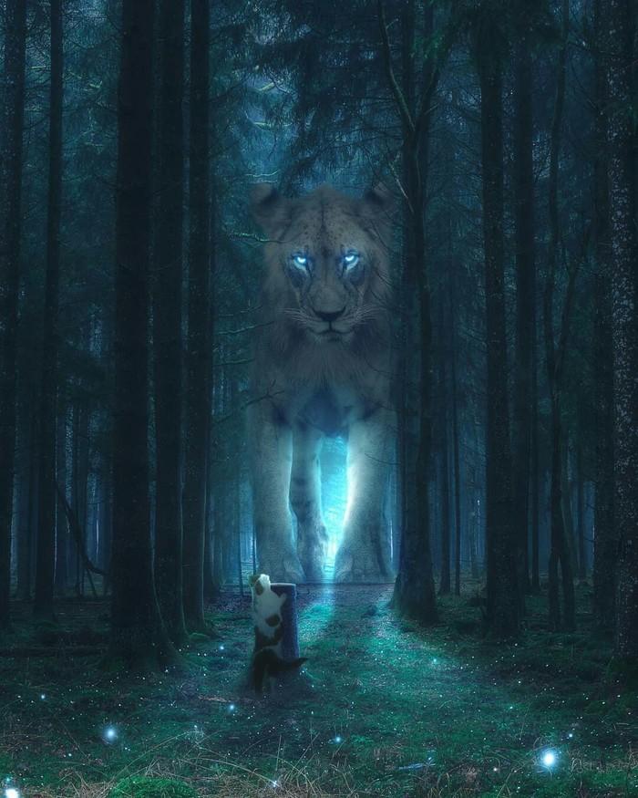 Встреча в лесу Арт, Рисунок, Лес, Лев, Кот, Встреча
