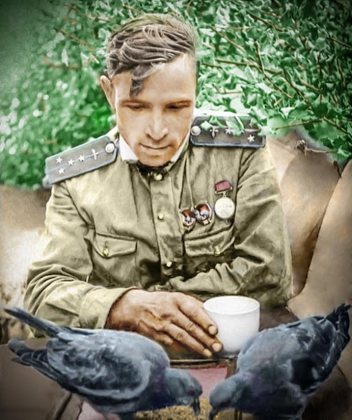 Калининский фронт, штурман Попов кормит голубей. Photoshop, Реставрация, Колоризация, Длиннопост, Великая Отечественная война