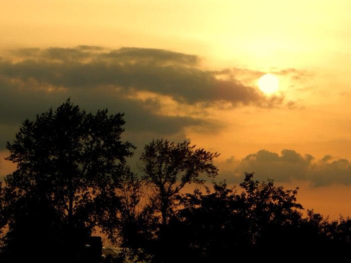 Вечерний кадр Начинающий фотограф, Красота природы