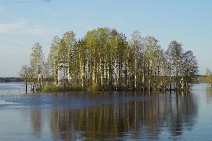 Природа просыпается. Лодка, Лодка пвх, Рыбалка, Лес, Вечнаа, Длиннопост