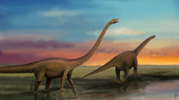 Как появились динозавры? Ярослав Попов. (Стенограмма) Ярослав Попов, Динозавры, Палеонтология, Noosphere Studio, Видео, Длиннопост