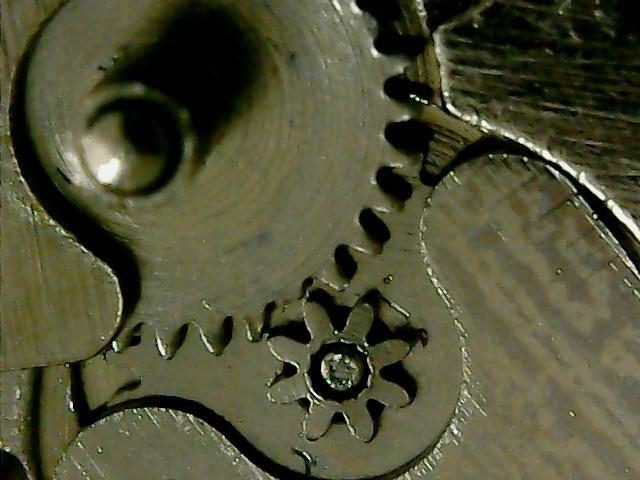 Длиннопост под микроскопом Часы, Микроскоп, Механизм, Детали, Длиннопост