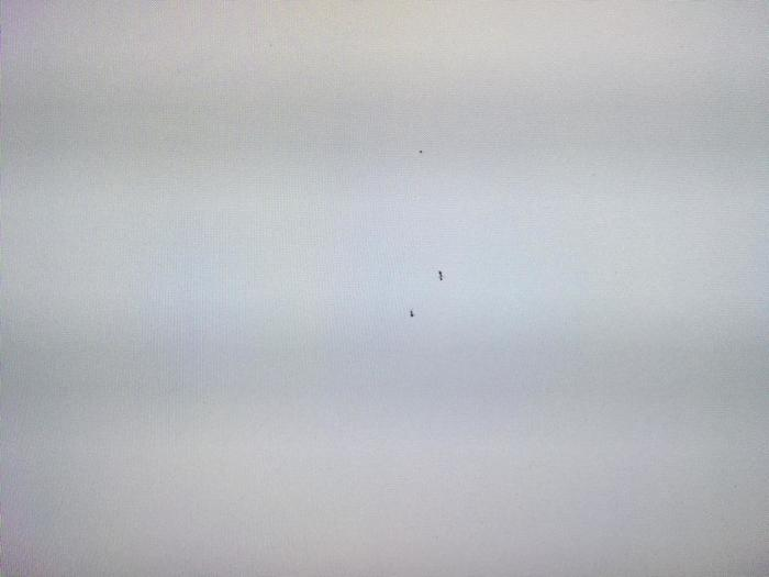Нужна помощь муравей в телевизоре Телевизор, Помощь, Техника, Муравьи