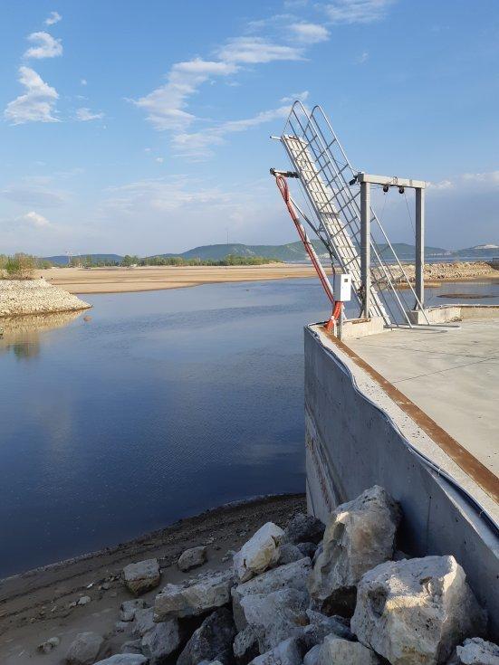 Беда на Куйбышевском водохранилище! Река Волга, Вода, Экология, Длиннопост