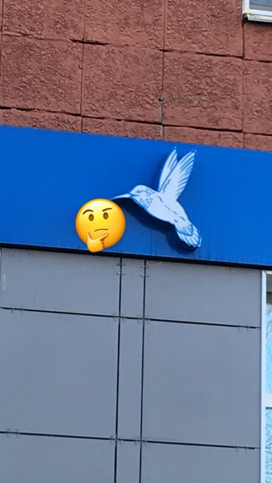 Что приносит колибри? Загадка, Логотип, Дизайнеры от бога