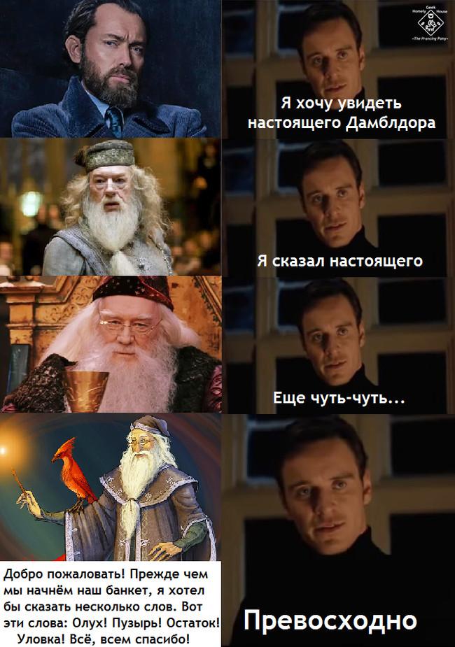 А помните книжного Дамблдора? Гарри Поттер, Альбус Дамблдор, Преступления Грин-де-Вальда, Книги