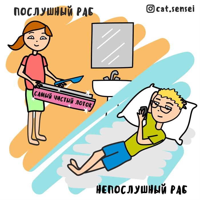 Правда жизни Кот, Сенсей, Длиннопост, Комиксы
