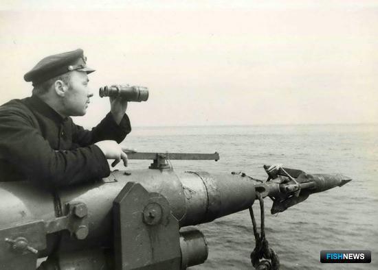 Капитан-гарпунер ТОФа тов.Зарва. Кит, Гарпунер, Китобой, СССР, 1938, Дальний Восток
