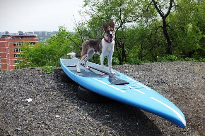 Хвастаемся новой законченной доской Серфинг, Sup серфинг, Владивосток, Своими руками