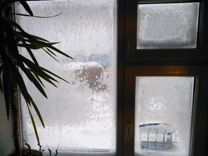 Салехард. Утро 24 мая. Салехард, Погода, Климат, Видео
