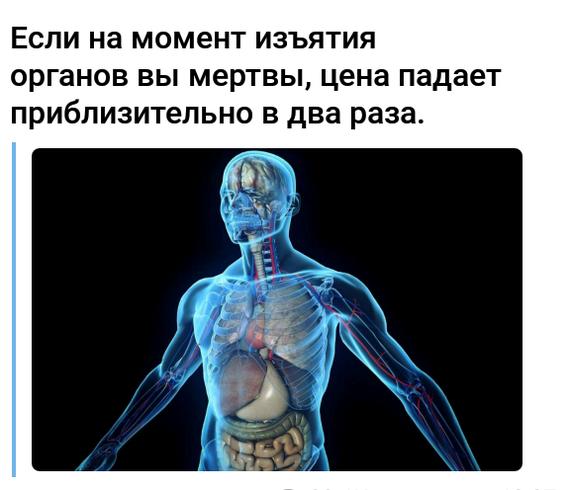 Цены на органы Анатомия, Органы, Цены