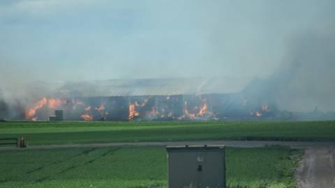 Куриный холокост Новости, Пожар, Птицефабрика, Швеция