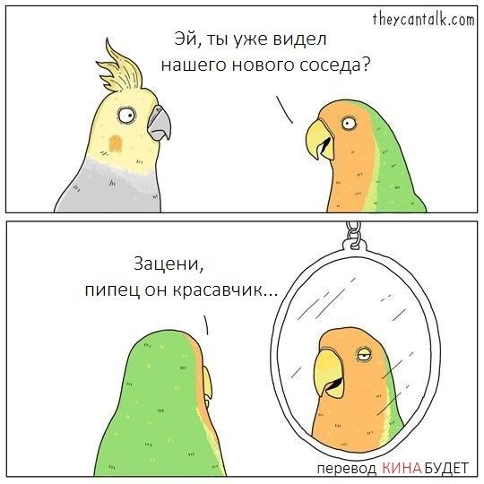 Новый сосед Попутчики, Соседи, Зеркало, Комиксы, Theycantalk