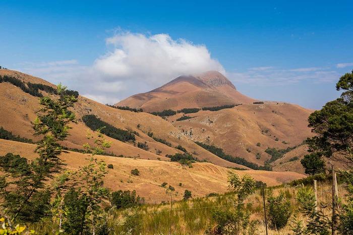 Находка в Африке: следы внеземной жизни? Находка, Органика, Внеземная жизнь