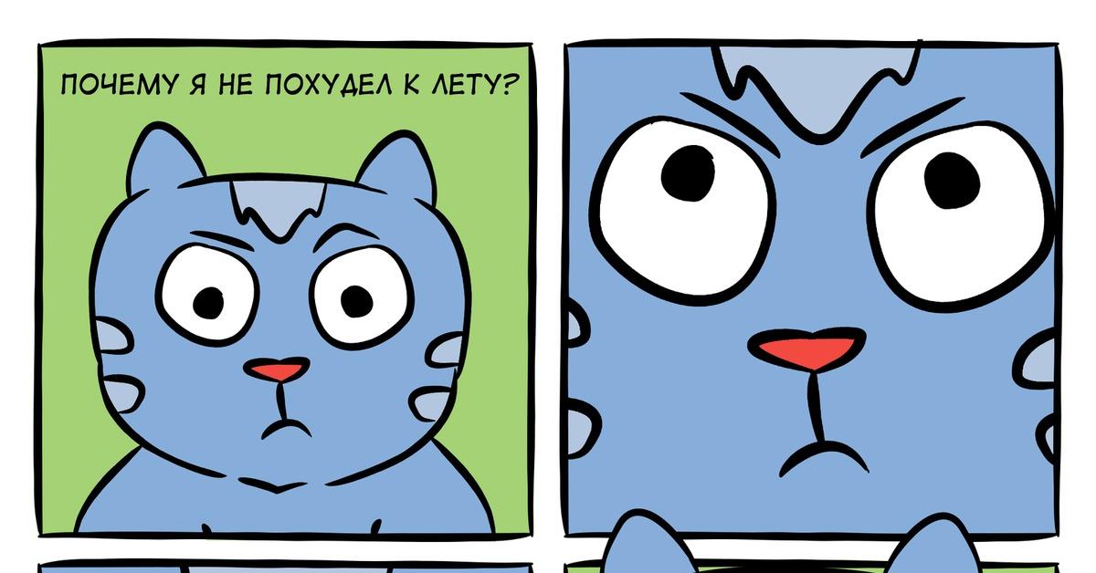 Кот Летом Похудел.