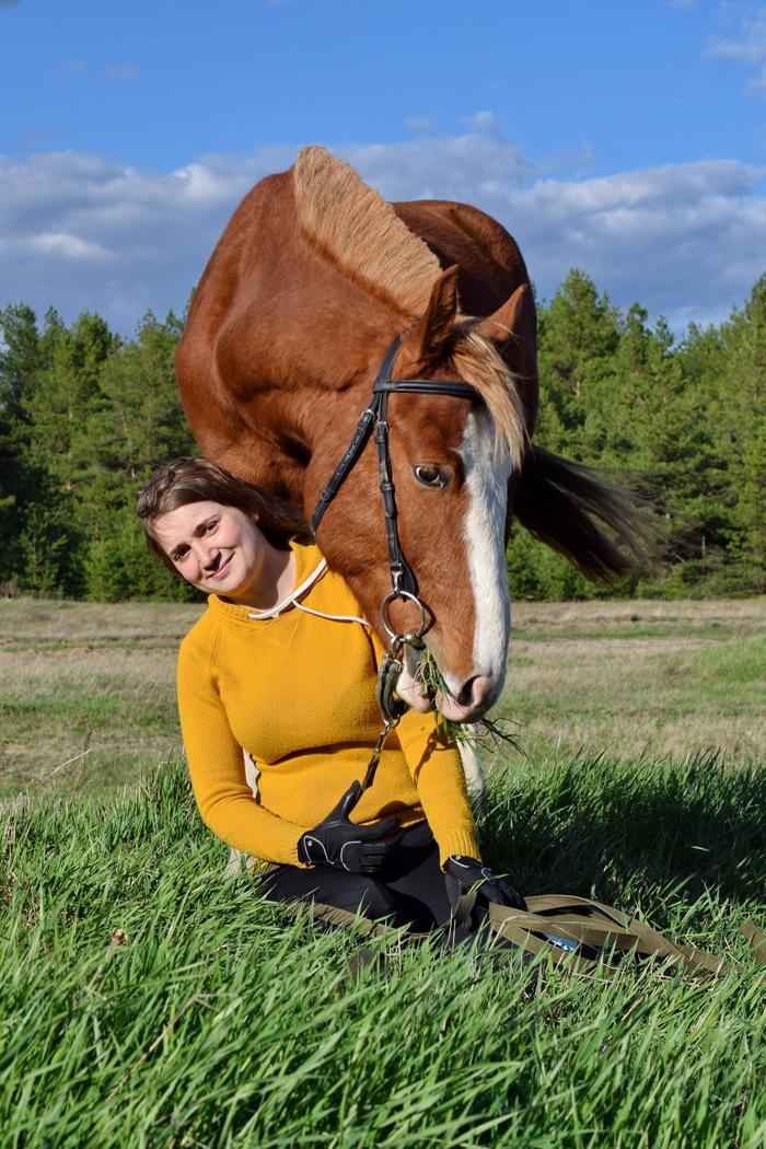 Как мы коня заезжали Лошадиные истории, Заездка, Длиннопост