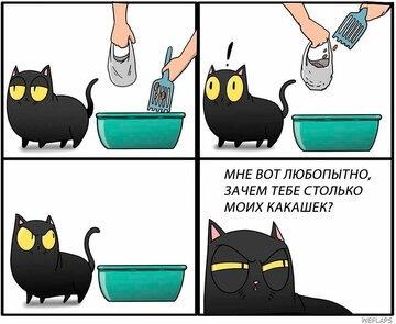 Приключения кошки Коры и ее питомца. Кошка по имени Кошка, Комиксы, Веселые питомцы, Длиннопост, Кот