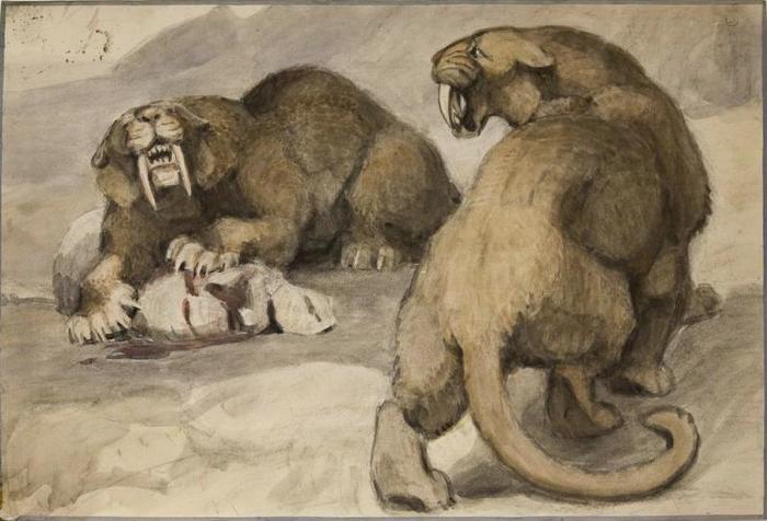 Махайродусы Палеонтология, Саблезубый, Млекопитающие, Стихи