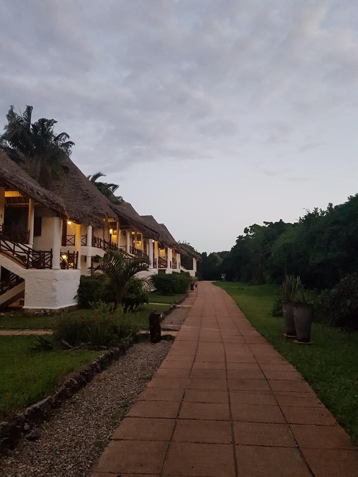 Кивенгва, Занзибар Танзания, Занзибар, Длиннопост