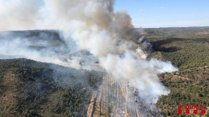 Лесные пожары в Испании и как я в спасательную службу звонила Испания, Пожар, Пожарные, Заграница, Длиннопост