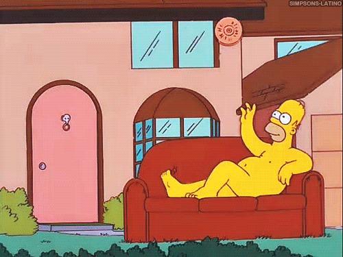 Симпсоны на каждый день [25_Июня] Симпсоны, Каждый день, Король Лев, Фрисби, Гифка, Длиннопост