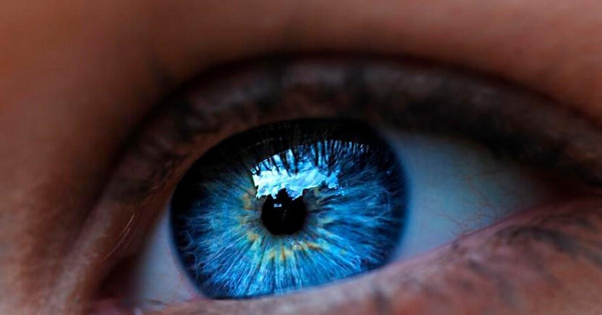 синий цвет глаз картинки толстая