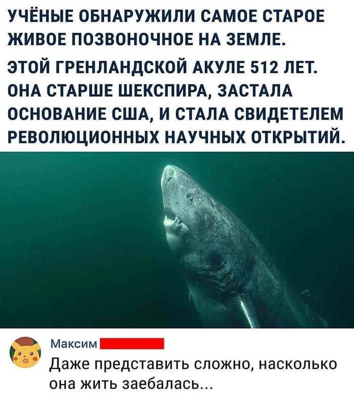 1563032952180957187.jpg