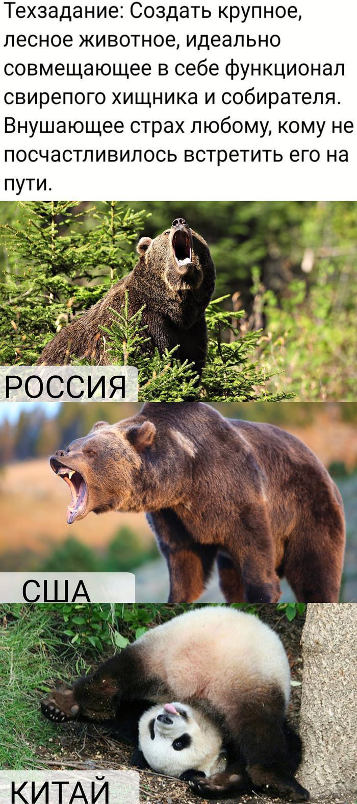 https://cs7.pikabu.ru/post_img/2019/07/23/2/1563842485122837269.jpg