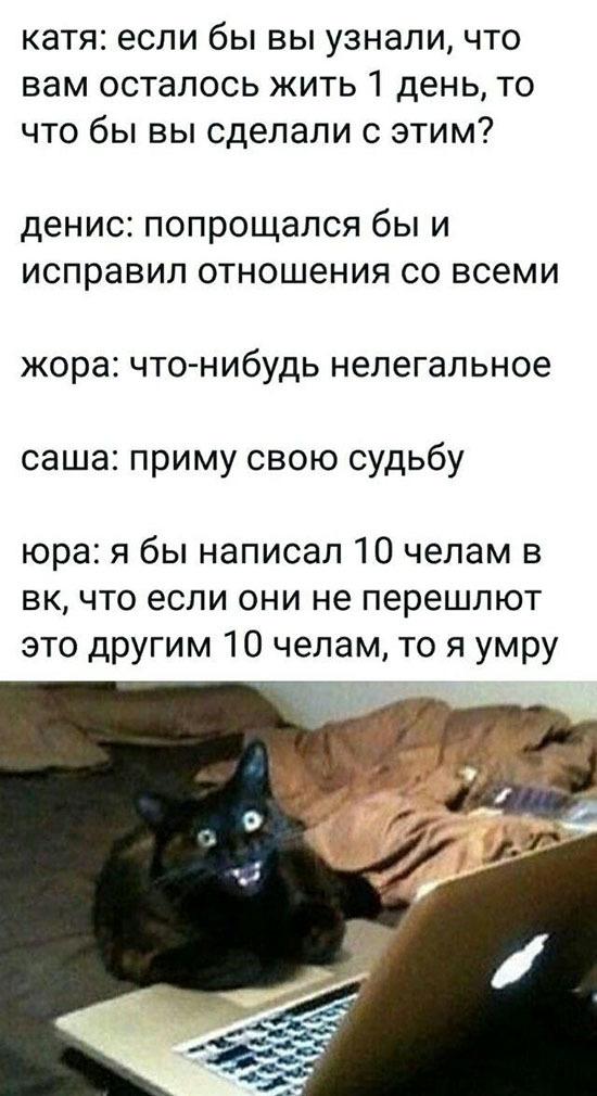 1568045671144154881.jpg