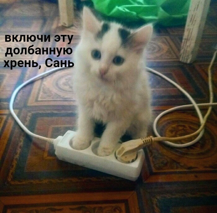 15682132231739382.jpg