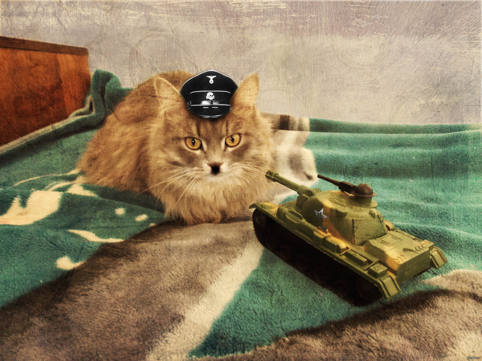 заболевание картинки животных танков хогвартс