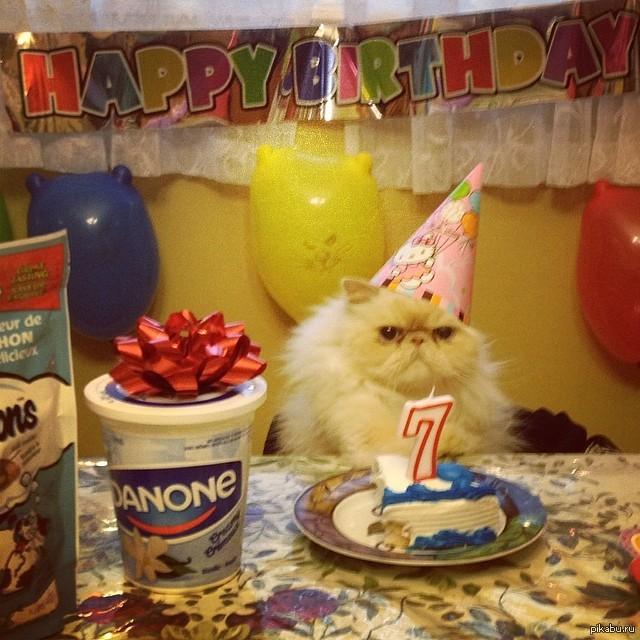 Поздравление для юля с днем рождения золотой