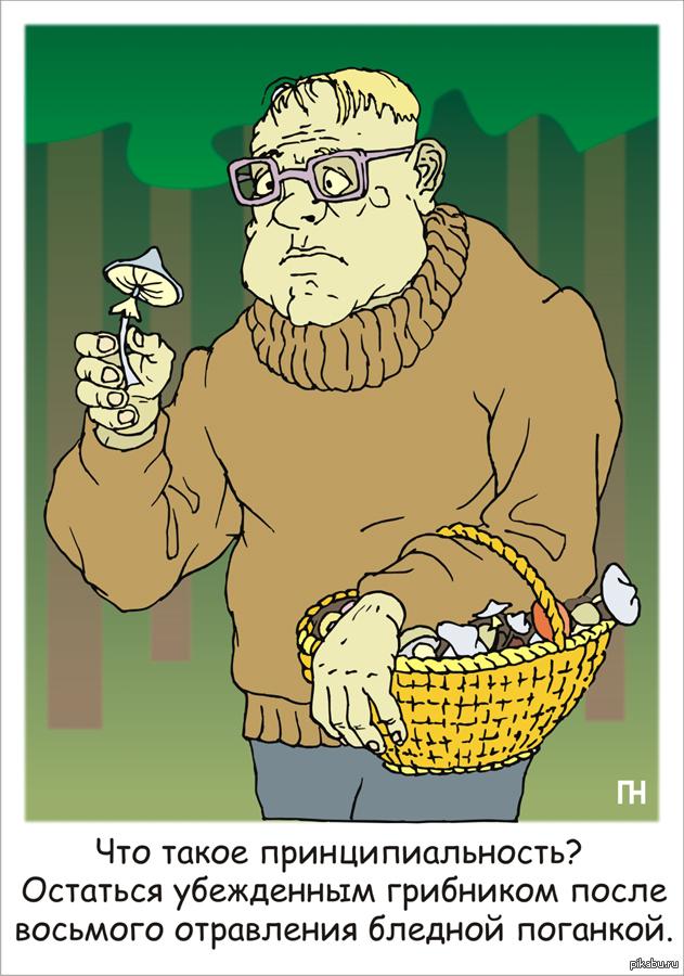 Картинки про грибников смешные, советская открытка