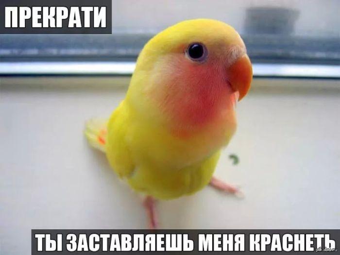 1404757022_1862842895.jpg