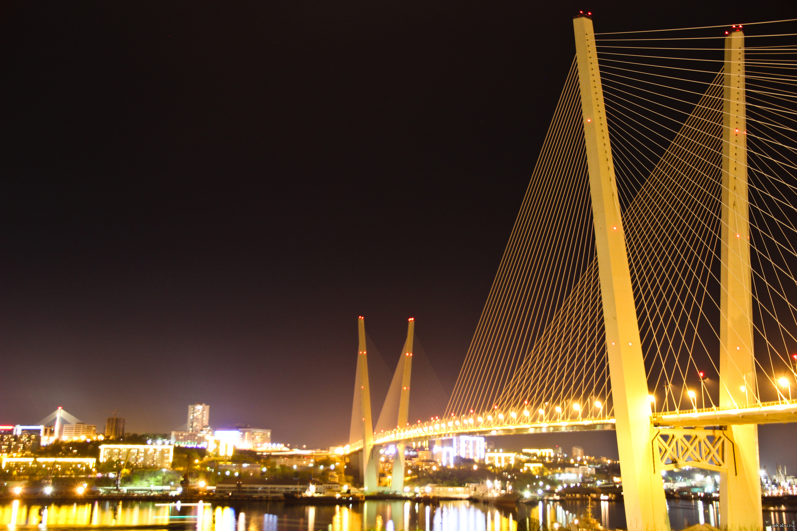 как собаки, картинки золотого моста можно