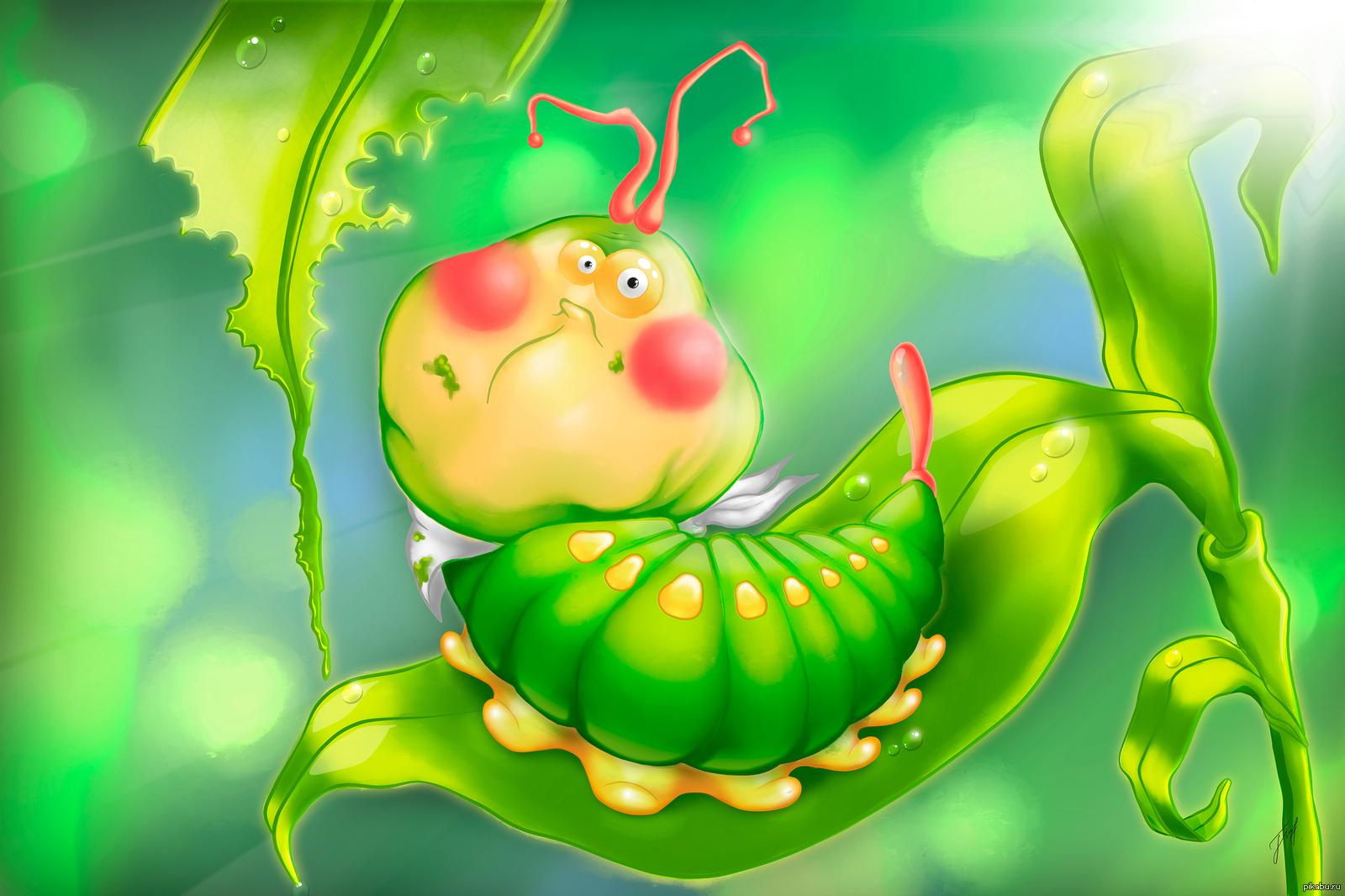 Для оксана, смешные картинки с гусеничками