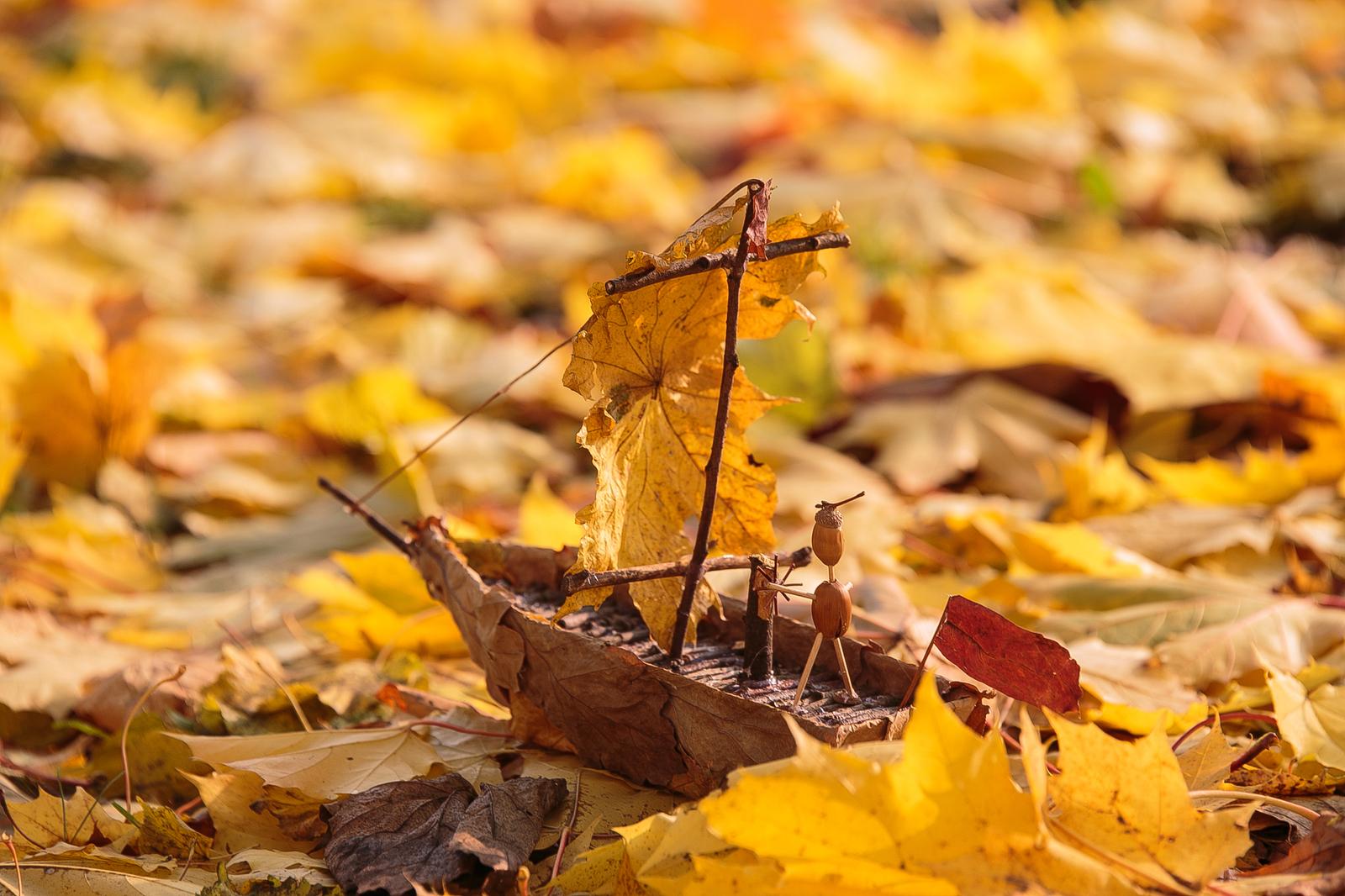 Картинки по запросу картинки сад осень