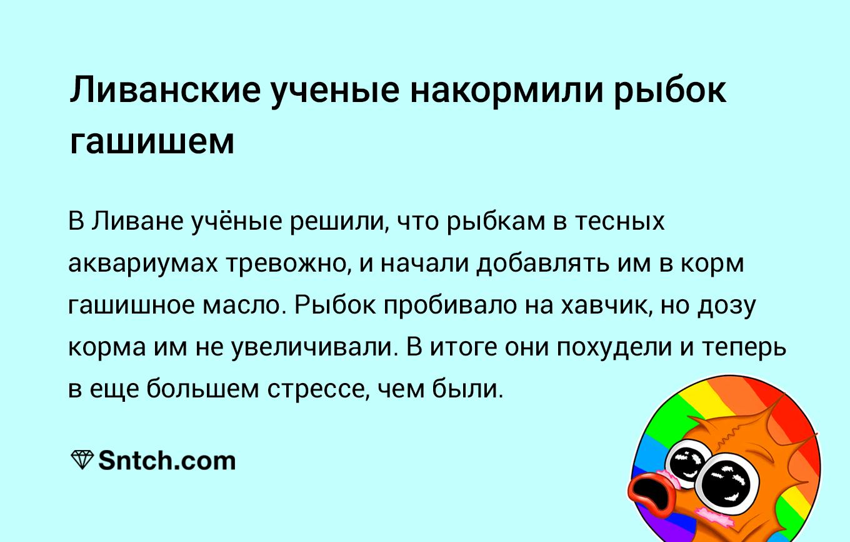 Метадон в россии