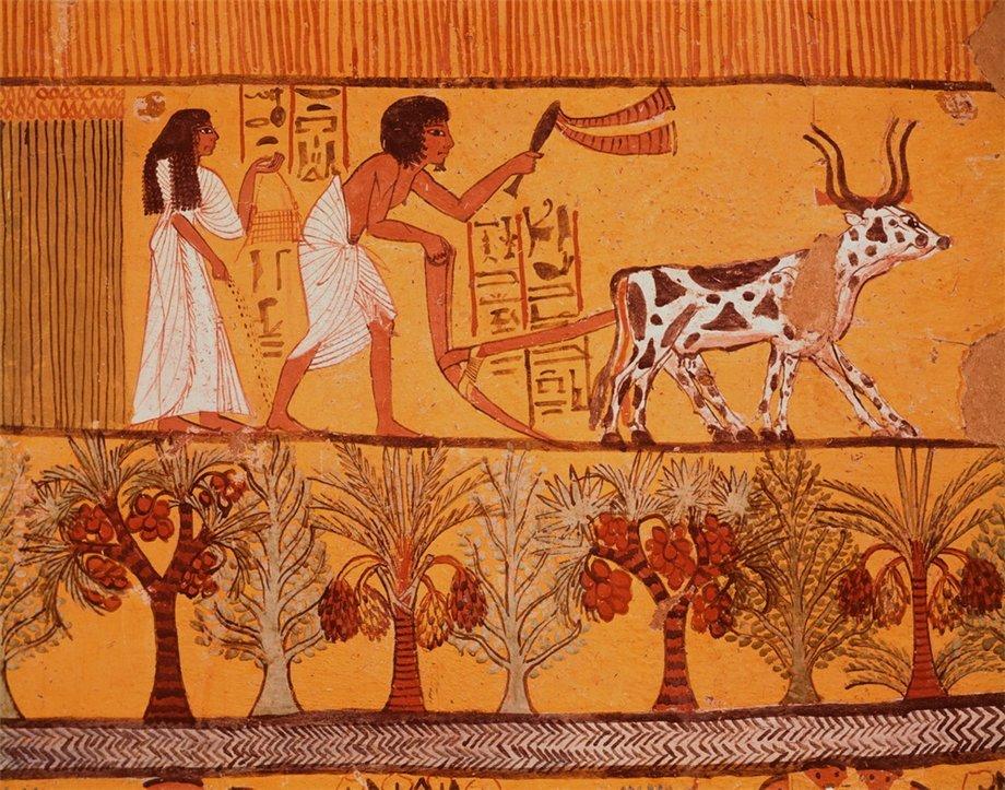 Женский секс с быком в древнем мире