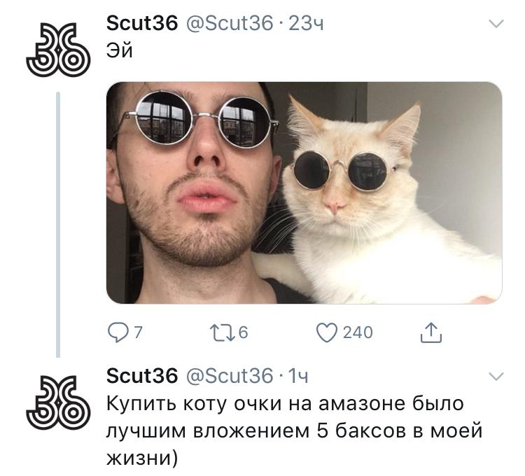 Хуй кота базилио