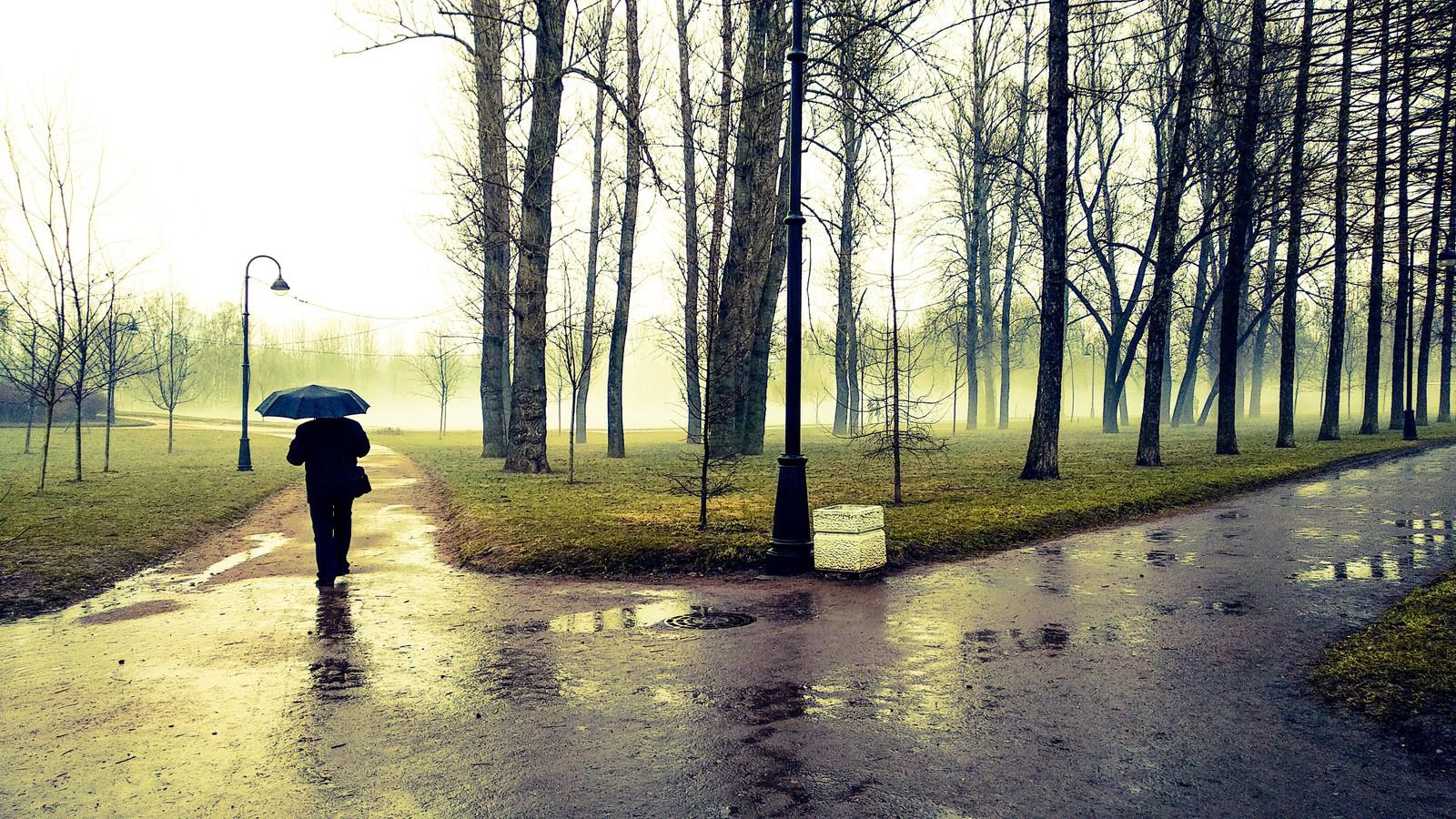 Погода на сегодня: на большей части страны пройдут осадки