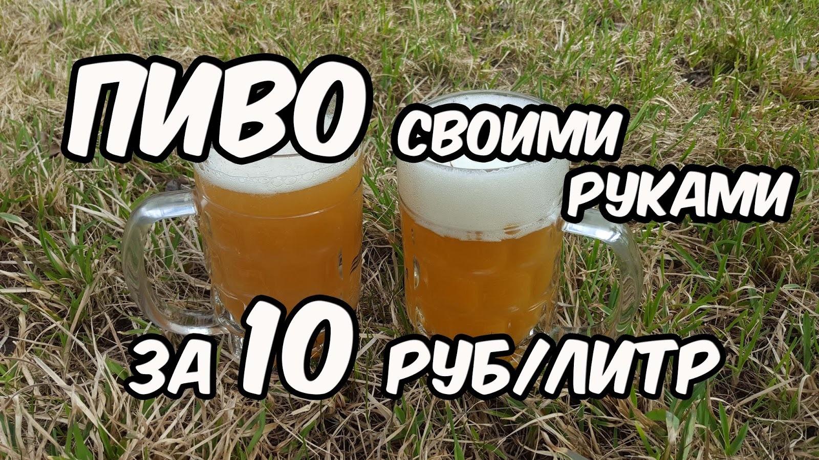 Пивные дрожжи своими руками для пива фото 88