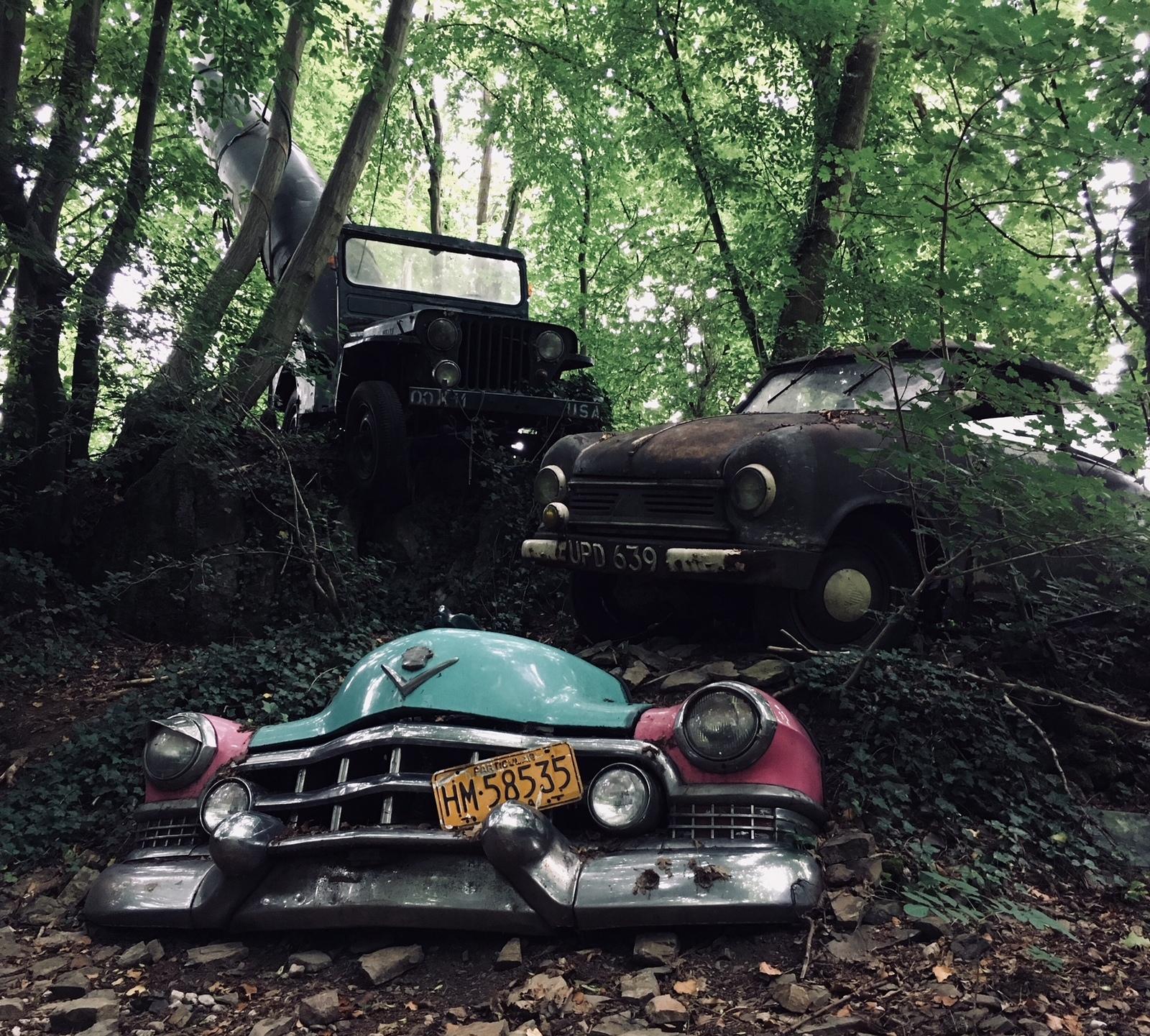 Обои автомобил, лес, брошенный, ржавчина, старый. Разное foto 11