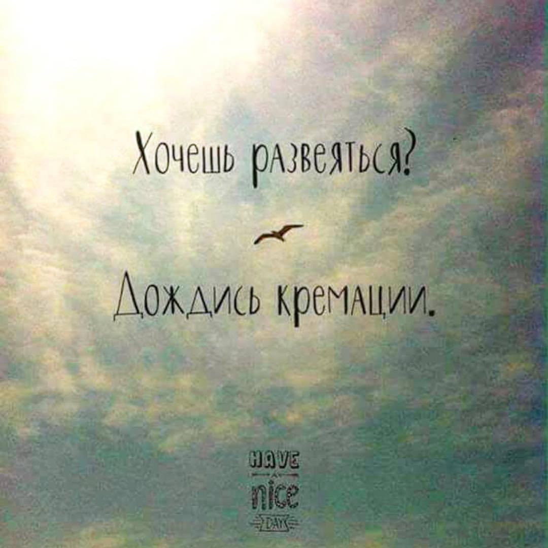 https://cs7.pikabu.ru/post_img/big/2018/07/09/0/1531086198172316226.jpg