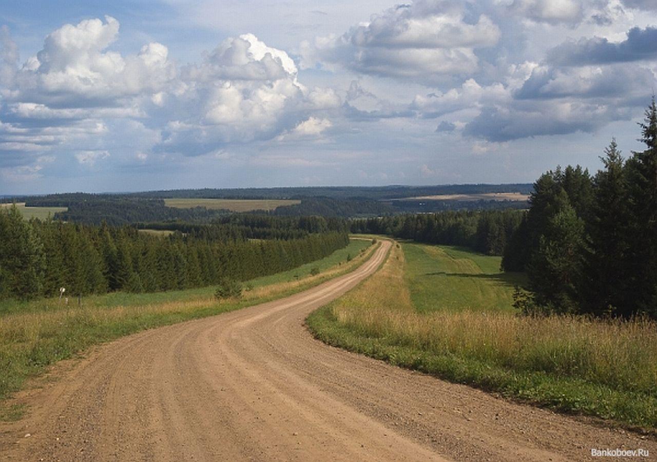 Сельская дорога своими руками фото 829