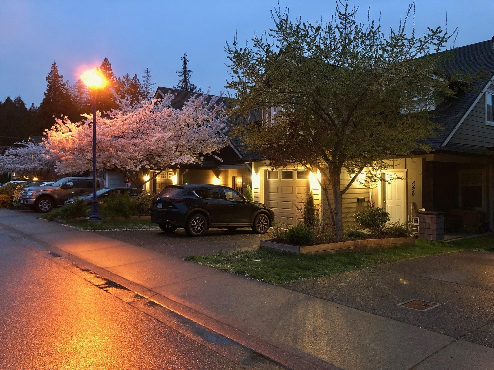 Обои фонари, ночь, дождь, экипаж, люди, улица, дома. Разное foto 12
