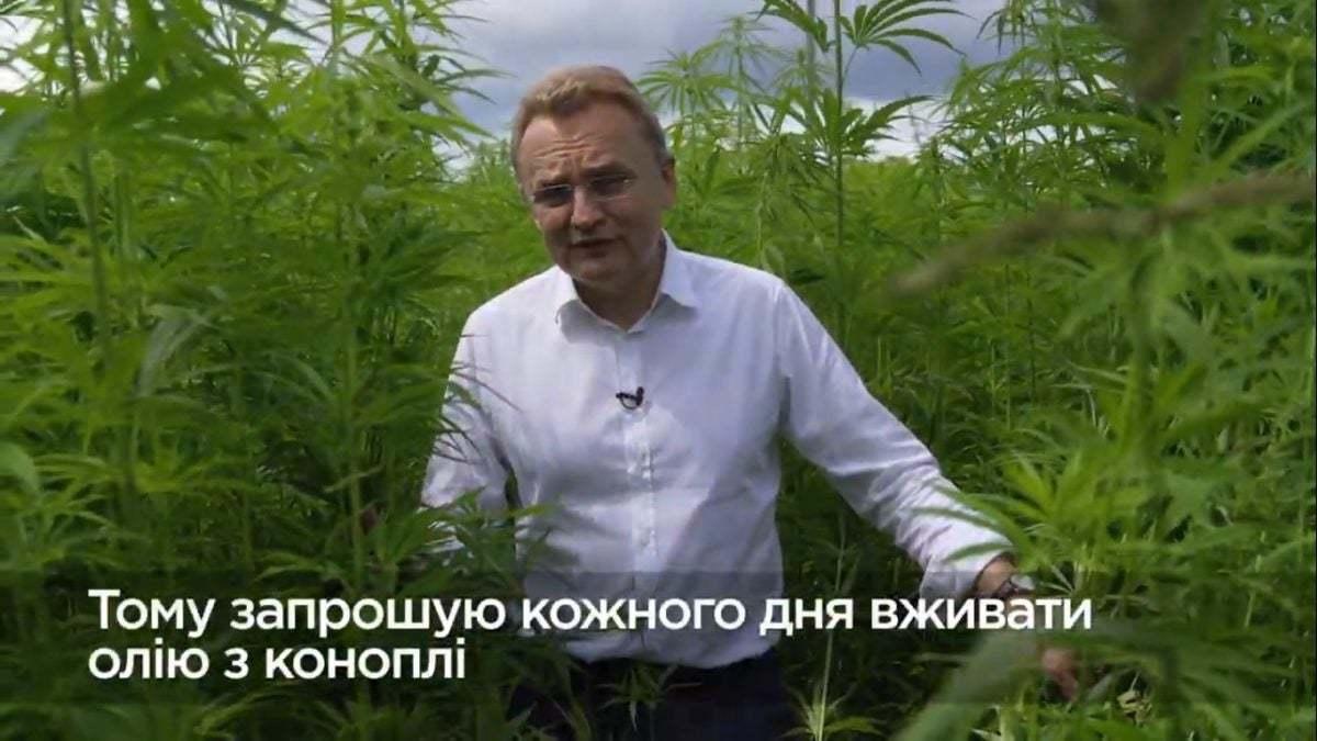 Видео конопля всего хорошего российские семена конопли